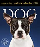 Dog Page-A-Day Gallery Calendar 2022