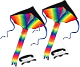 SINGARE 2 Pack Rainbow Delta Kite, Kites for Kids Adults Easy to Fly, Long Tail Huge Flyer, Great Outdoor Activities Beach Games for Kids, with Line and Handle