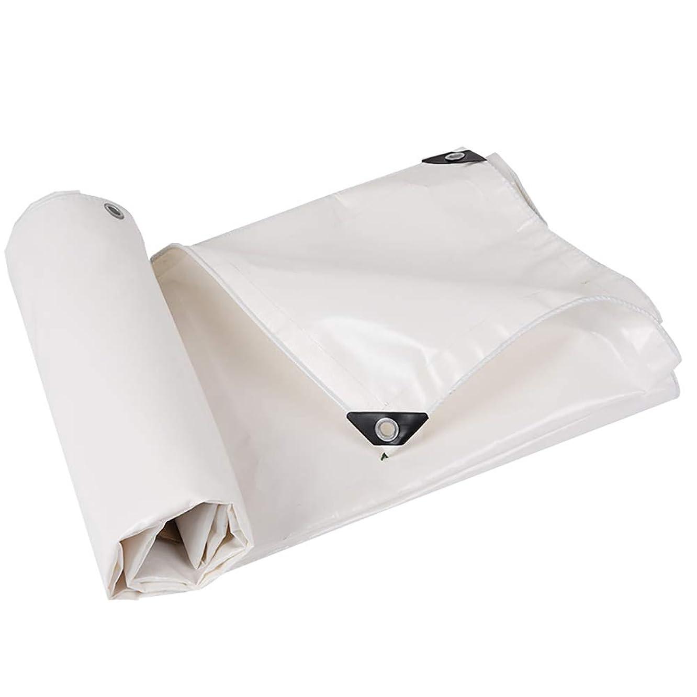 L-BHQF White Tarpaulin Waterproof Rainproof Sunscreen tarp Sun Shade Outdoor Camping Tent Splice,500G/M2 (Size : 4m×5 m)
