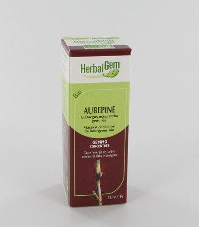 Herbalgem - Gemmothérapie Aubépine (Crataegus Oxyacantha Gemmae) 5