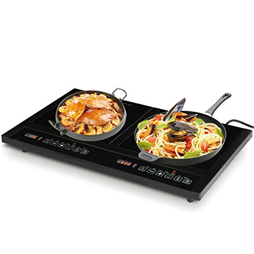 Dual induction electric cooker cooktop 1800w countertop double burner portable