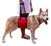 Mesure: M- 75cm de long, 17cm de large, adapté pour 10à 25kg; L- 87cm de long, 21cm de large, adapté pour 25 à 35kg. XL- adapté pour 35 à 44,9kg. En polyester et éponge doux, rembourré, robuste, durable, et confortable pour votre chien. Conf...