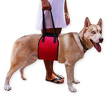 Mesure : M- 75 cm de long, 17 cm de large, adapté pour 10à 25 kg ; L- 87 cm de long, 21 cm de large, adapté pour 25 à 35 kg. XL- adapté pour 35 à 44,9 kg. En polyester et éponge doux, rembourré, robuste, durable, et confortable pour votre chien. Conf...