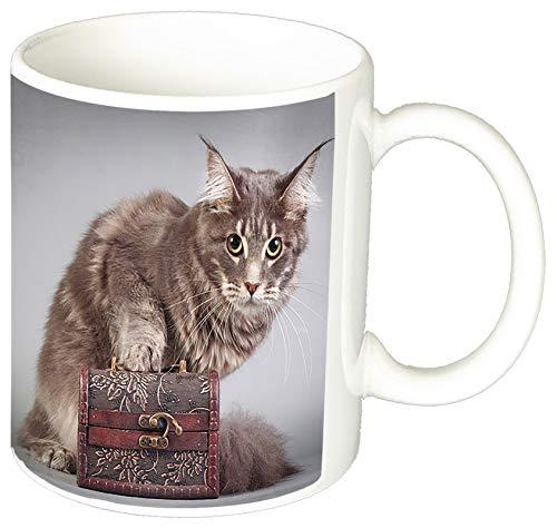 MasTazas Gatitos Gatos Kittens Cats B Tasse Mug