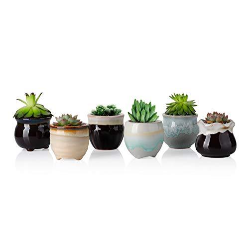 Greenaholics Succulent Plant Pots - 2.3 Inch Glazed Small Ceramic Planters Pots for Succulent Seedling, Little Decoration, Succulent Gift Idea, Black&White, Set of 6