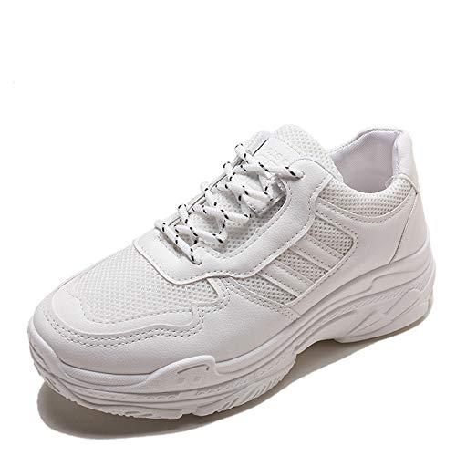 Dilnot Zapatillas para Mujer Correr Gimnasio Sneakers Zapatos de Seguridad