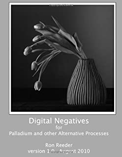 Digital Negatives for palladium and other alternative processes