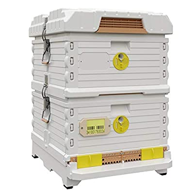 Apimaye Ergo Plus 10 Frame Langstroth Insulated Bee Hive Set with Plastic PRO Frames