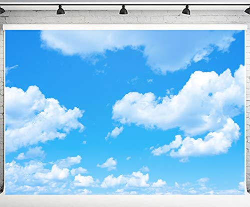 PHMOJEN 10x7ft Blue Sky White Clouds Backdrop Natural Scenery Photography Background Photo Studio Photography YouTube Twitter Backdrop Props PH002