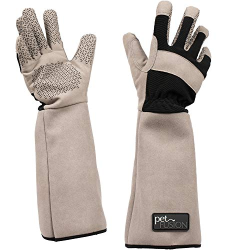 PetFusion Multipurpose Pet Glove for Grooming, Trips to Vet, Handling. [Puncture & Scratch Resistant, Water Resistant]. 12 Month Warranty for Manufacturer Defects, Grey, Large (PF-HG1A)