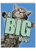 Cat A Big Hug Get Well Jokeカード 1 Jumbo Get Well Card & Enve. (J6614AGWG)