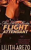 My Sexy Futa Flight Attendant: Fun with a Frisky Dominant Futa