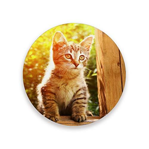 LUCKYEAH - Posavasos redondos para mesa con diseño de animales, resistentes al calor, alfombrilla de corcho de cerámica para bebidas, hogar, cocina, bar, juego de 2