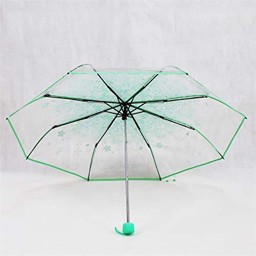 ZHENAO Paraguas para Mujeres B20, Paraguas Transparent Damas, a Prueba de Viento, Mango Curvado, Resistente en el Paraguas Es un Patrón de Cerezo Pintura de secado rápido/B