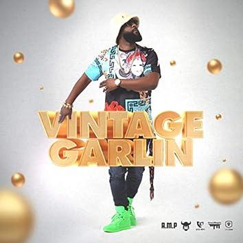 Vintage Garlin (feat. Fay-Ann Lyons)