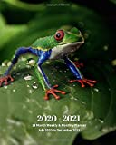 2020 -2021 18 Month Weekly and Monthly Planner July 2020 to December 2021: Frog - Monthly Calendar with U.S./UK/ Canadian/Christian/Jewish/Muslim ... Reptiles & Amphibian Animal Nature Wildlife