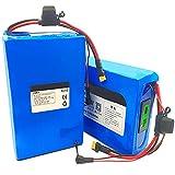 Tyssfzd Batteria per Bicicletta Elettrica da 60V 20Ah/25Ah/30Ah agli Ioni di Litio,60V 12Ahbatteria agli Ioni di Litio Elettrica Due Tre Ruote Moto,Accetta Batterie Personalizzate,60V 25AH