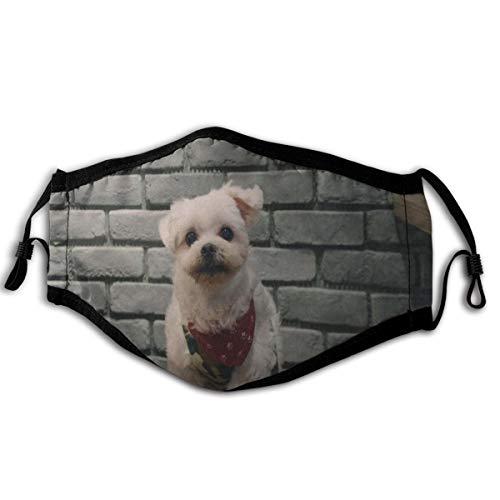 N/A Staubmaske Kurzmantel Beige Hund Beside Grau Wand weich und bequem, winddicht und staubdicht, geeignet für jeden Tag