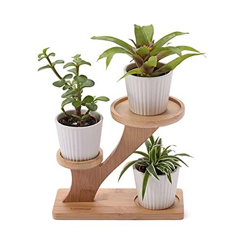 Lumaland Blumenständer aus Bambus, Pflanzenregal für den Innen- und Außenbereich, Pflanzentreppe für Blumentopf, Pflanzenständer 20 x 15 x 16,5 cm, Naturfarbe