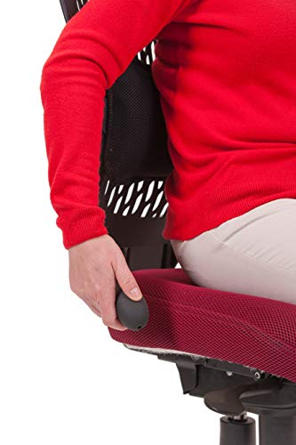 AirCareSystems (Reg: UK00003133539) Infinitely adjustable Lumbar Support Pad for Lower Back Pain Relief. Hand pump inflating air cell and sculptured foam. Breathable washable 3D mesh cover. AirCare Ergonomics (Reg: UK00003133539)