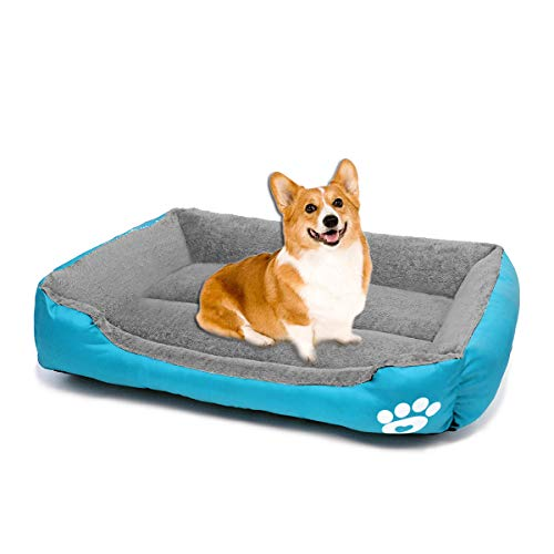 ZEEXIPDR Dog bed Cat bed Pet bed Super soft pet sofa bed, soft wool fleece PP cotton made into a pet bed, suitable for small medium dogs or cats (L:63 * 53 * 15CM(24.8 * 20.9 * 5.9Inch), Blue)