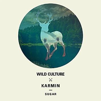 Sugar (Remixes)