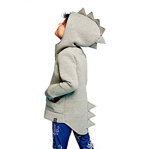 Aibeajoy Ropa de bebé para niños, ropa infantil, chaqueta de dragón, otoño, dinosaurio, manga larga, sudadera con capucha, para niños de 1 a 7 años gris 100 cm