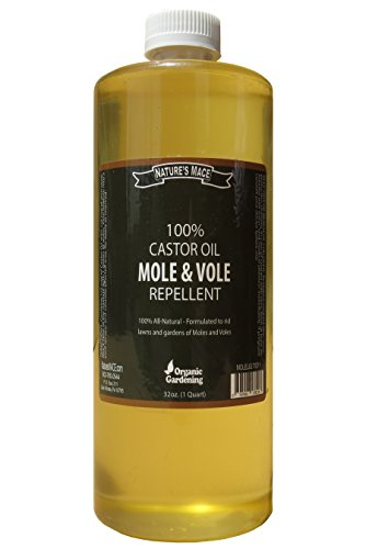 Nature's MACE Mole & Vole Repellent 32oz Castor Oil Concentrate / Covers up to 5,000 Sq. Ft. / Keep Moles and Voles Out of Your Lawn and Garden / Safe to use Around Home & Plants Guaranteed