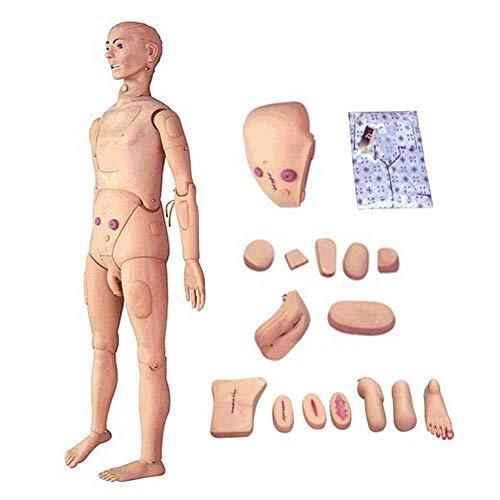 Maniquí de cuidado Modelo médico 170cm Tamaño natural Maniquí de cuidado del paciente Simulador de entrenamiento Habilidades básicas de enfermería Modelo humano geriátrico Maniquí de cuerpo completo