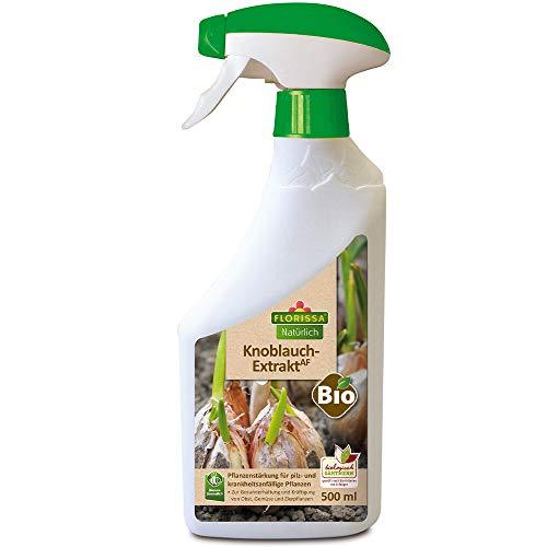 Florissa Natürlich 58895 Bio Knoblauch Extrakt | zur Vorbeugung von Pilzen und Krankheiten bei Obst, Gemüse und Zierpflanzen | Natur im Garten biologisch GÄRTNERN Gütesiegel, Farblos