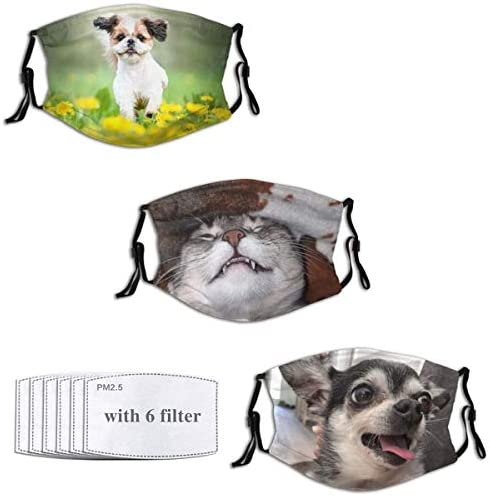 Funny Animal Masks Reusable Balaclava with 6 Filters Washable Face Cover Adult Women Men Teens product image