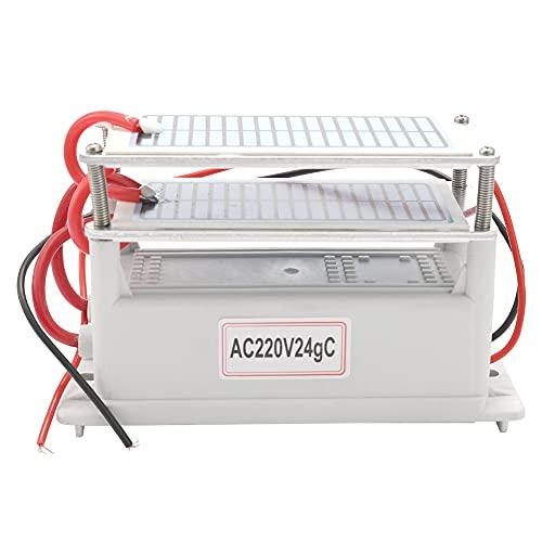 Weytoll Generador portátil de ozono cerámico 220 V 24 g de larga duración Dos pastillas de ozono integrado Purificador de agua aire con placas Ozonizador