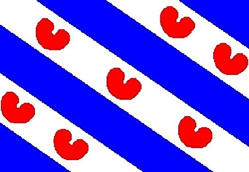 U24 Motorradflagge Niederländisch Friesland Fahne Flagge 20 x 30 cm