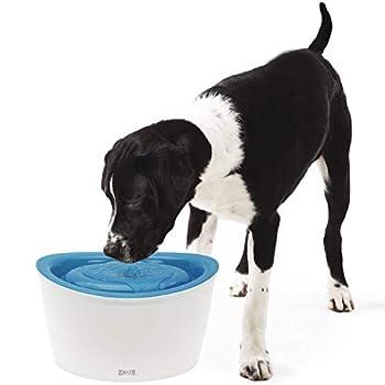 Dogit Fontaine à Chien 6 L