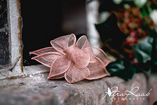 B22 BESTSELLER nude puder Haarreifen Fascinator Headpieces Headband Bridal flowers Rockabilly Style...