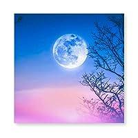 カラフルな空の夜の風景 木製 額縁 フォトフレーム 壁掛け 木製 横縦兼用 絵を含む 40×40cm