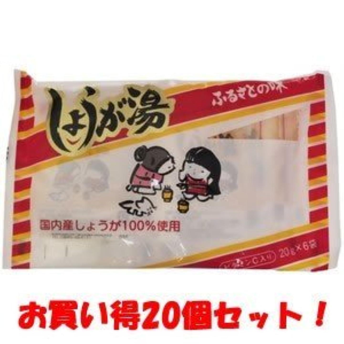 虚弱気分闘争(今岡製菓)しょうが湯 20g×6袋(お買い得20個セット)