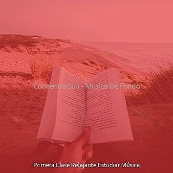 Concentracion - Musica De Fondo
