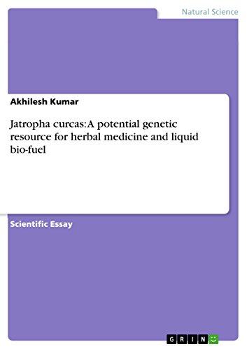 Jatropha curcas: A potential genetic resource for herbal medicine and liquid bio-fuel (English Edition)