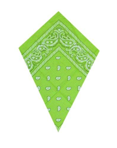 Preisvergleich Produktbild Grüner Paisley Bandana Kopftuch