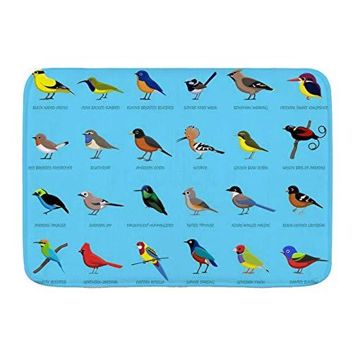 LOSUMIGE Badematte Fairy Birds Side Grosbeak View Name Finch Bunting Busch Zaunkönig Elster Bluebird Papagei, Plüsch Badezimmer-Dekor-Matte mit Rutschfester Unterseite, 75CM x 45CM