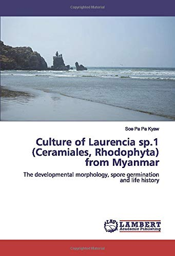 Culture of Laurencia sp.1 (Ceramiales, Rhodophyta) from Myanmar: The developmental morphology, spore germination and life history