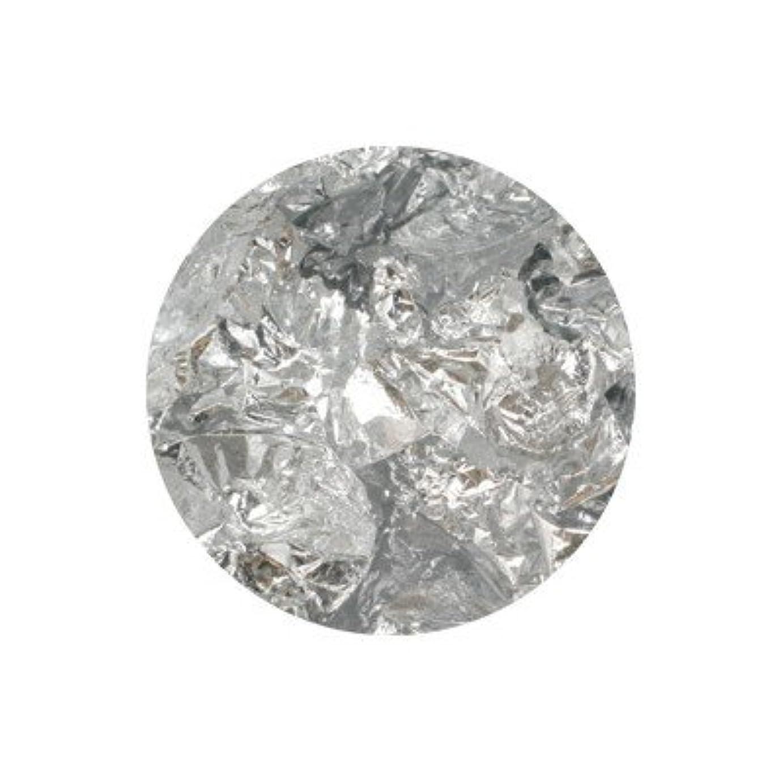 まどろみのあるまつげ混沌ボンネイル 銀箔