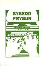 Bysedd Prysur (Welsh Edition)