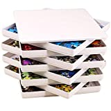 PUZZLE EZ Puzzle Sorting Trays with Lid Sorter Jigsaw Puzzle Accessories Storage for Adults Organizer Sort and Go Hold Up to 1000 Pieces Space Saver Gift for Puzzle Lover