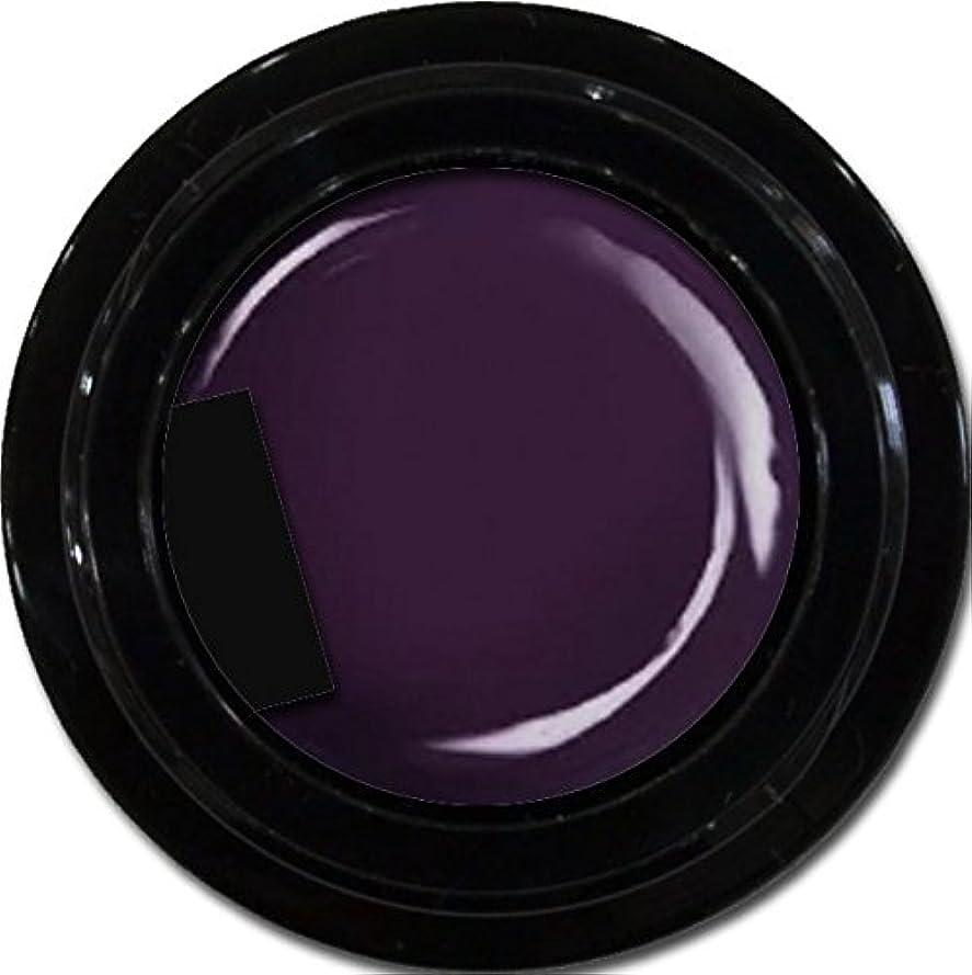 卑しいスイ権限を与えるカラージェル enchant color gel M719 AsaiMauve3g/ マットカラージェル M719アサイーモーブ 3グラム