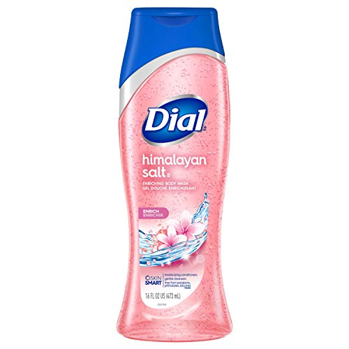 Dial Body Wash, Skin Therapy Himalayan Pink Salt & Water Lily, 16 Fluid Ounces