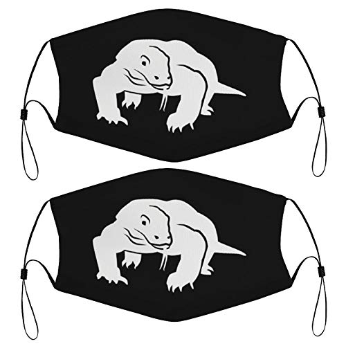 Kids Face Masks Set of 2 with 4 Filters Dragon Crocodile Komodo Washable Reusable Adjustable Black Breathable Cloth Bandanas Scarf for Adults Men Women