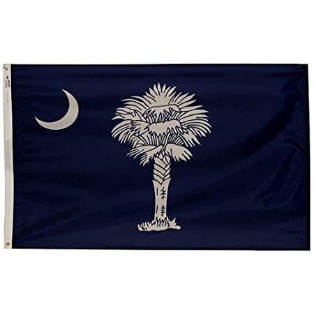 South Carolina State Flag Suitable for Any Mobile Phone Three in One Data Line