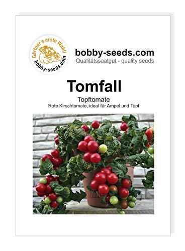 Tomfall Topftomate von Bobby-Seeds...